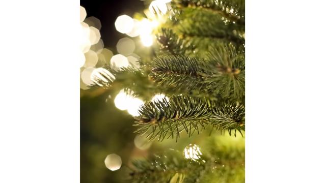 Weihnachtsmarkt Aichach.ödp Aichach Friedberg Weihnachtsmarkt Der Fraktionsgemeinschaft